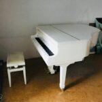 Schaltschranktransport Kosten Schwertransporte Klaviere Billwerder