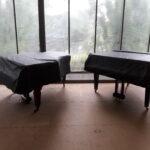 Klaviertransporte Schornstein Moorburg Transportieren Kaminofen Tresore
