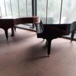 Moorfleet Badewannen Lichtblick Hersteller Preis Klaviertransport
